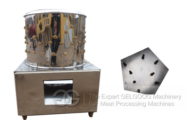 Poultry Dehairing Machine