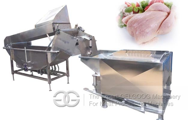 Poultry Scalding Plucking Machine