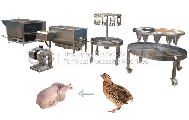 Small Commercial Quail...